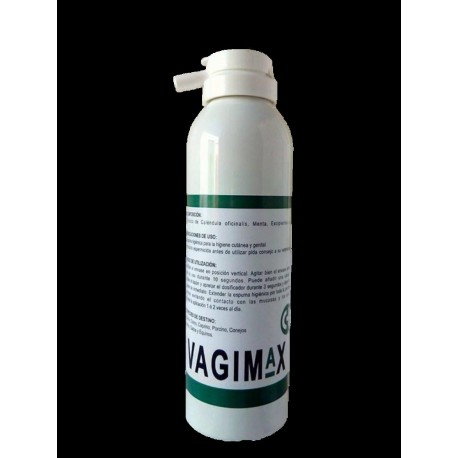 VAGIMAX ESPUMA 270 ML